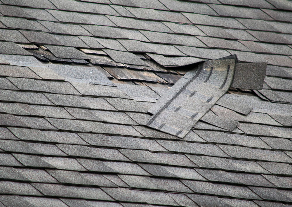Do I Need to Repair or Replace My Roof?