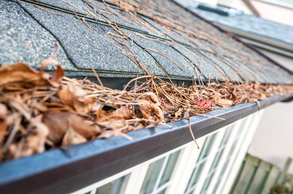Gutter Repair in Kansas City: When Should You Call a Pro?