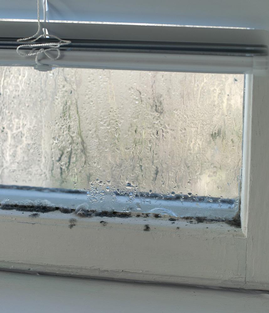 How Do I Know if I Need New Windows?